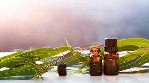 huile essentielle eucalyptus pour les reflux acides